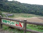 009mokoのコピー.jpg